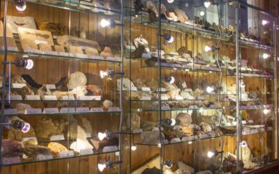 Museo Geologico Sperimentale