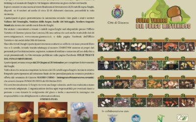 Sulle Tracce del Fungo Misterioso  dal 20 giugno al 30 settembre 2021